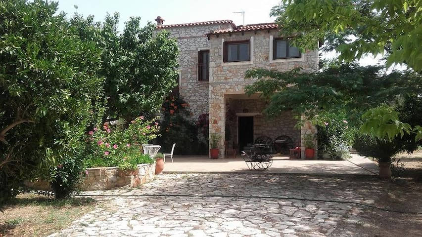 Traditional Family House Nafplio - Agia Kiriaki - Treehouse