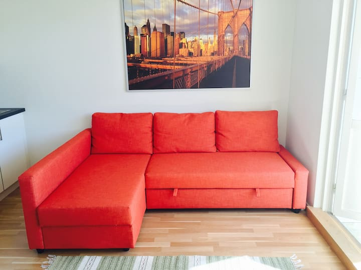 Comfy couch 10 minutes from the train station.