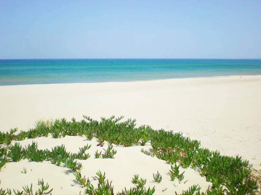 Spiaggia, Alcamo Marina