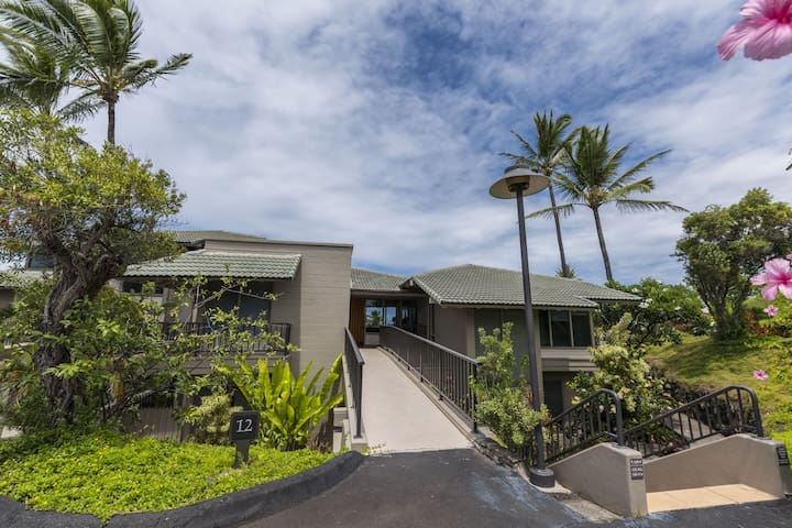 Nicely Remodeled 1BR Ocean View Kapalua Bay VIlla #12B4