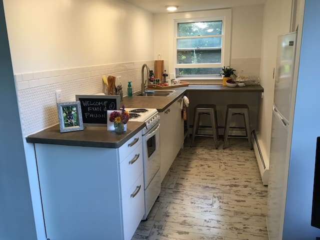 Brand new kitchen with cement countertop.