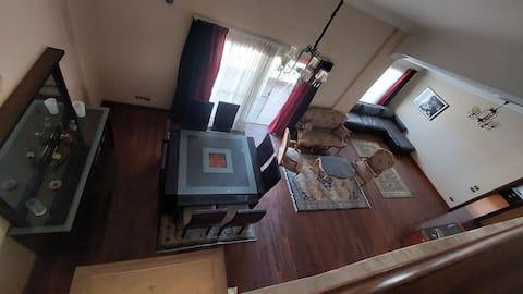 Bright spacious penthouse