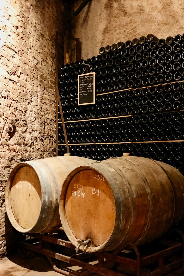 Discover the premises of the wine maker