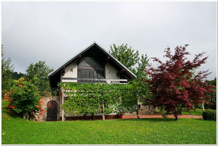 Vineyard cottage above Crnomelj - Mavrlen