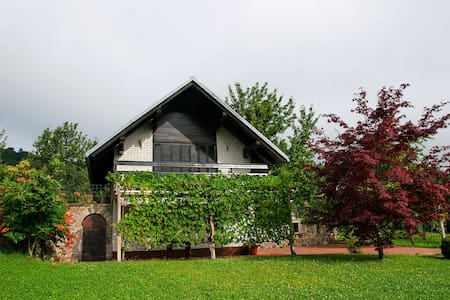 Vineyard cottage above Crnomelj - Mavrlen - Appartement