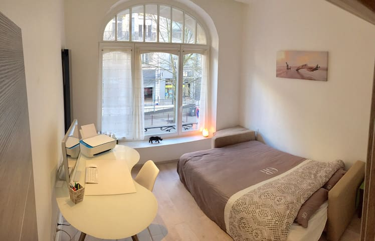 Chambre SDB Privée, Zen,Haussmannien, hypercentre - Lille - Apartamento