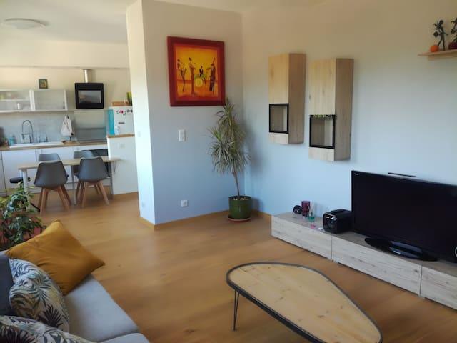 Appartement centre cahors lumineux avec belle vue