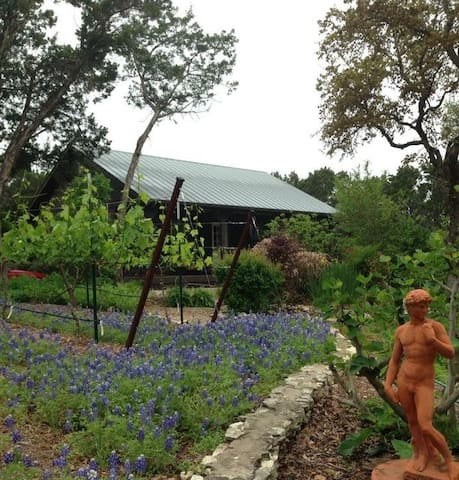 Grey Forest Vineyard Cabin - Pool, Views & Charm!