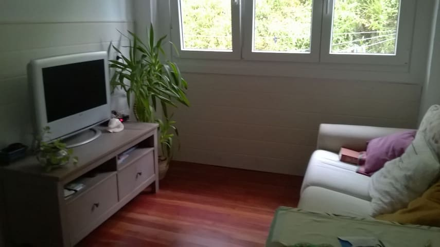 Apartamento acogedor y fresco