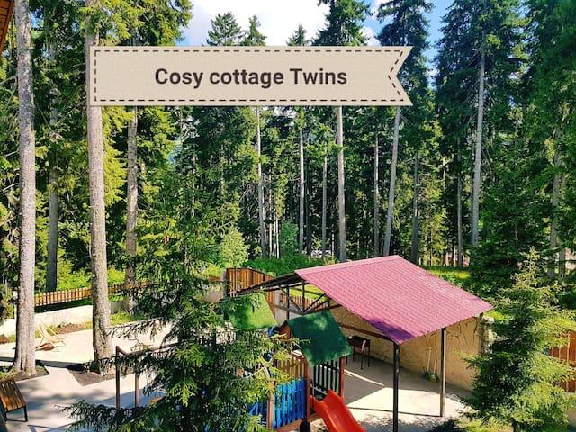 "Cosy cottage ""Kokhta Twins"" bakuriani/ბაკურიანი"