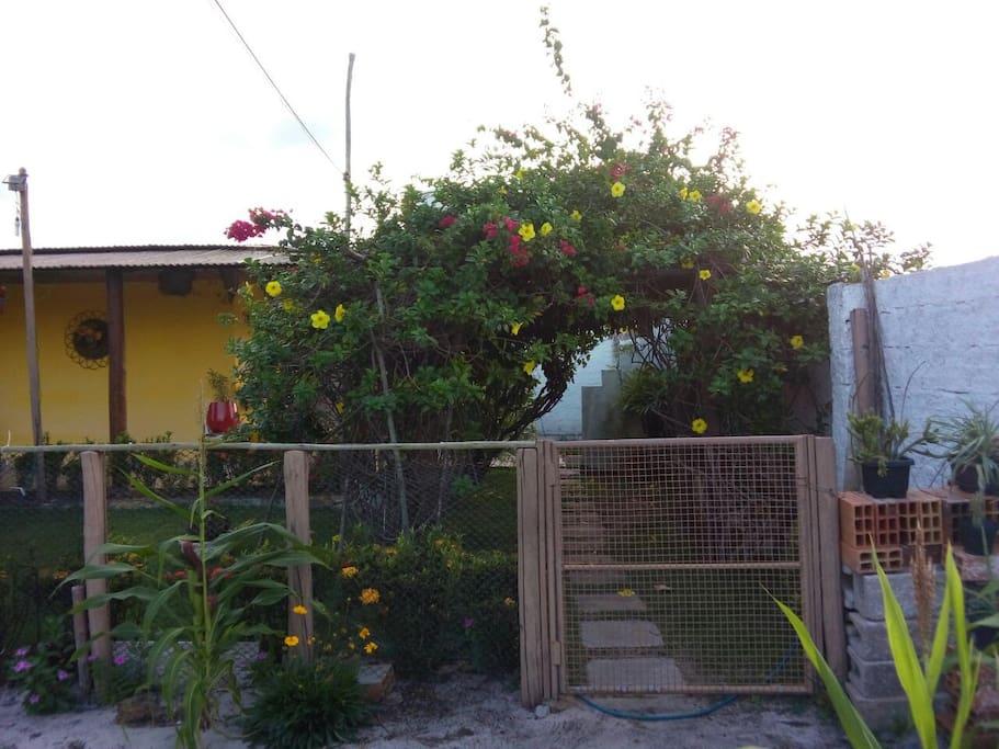 garden - jardim