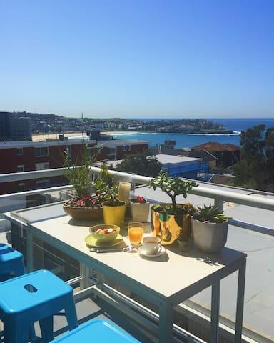 Bondi Beach Ocean Oasis - Bondi - Apartamento