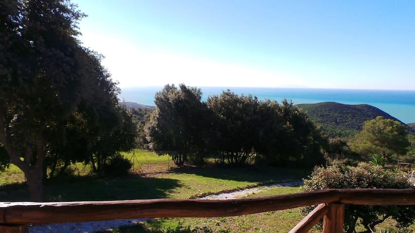 in collina con stupenda vista mare - Livorno - Hus