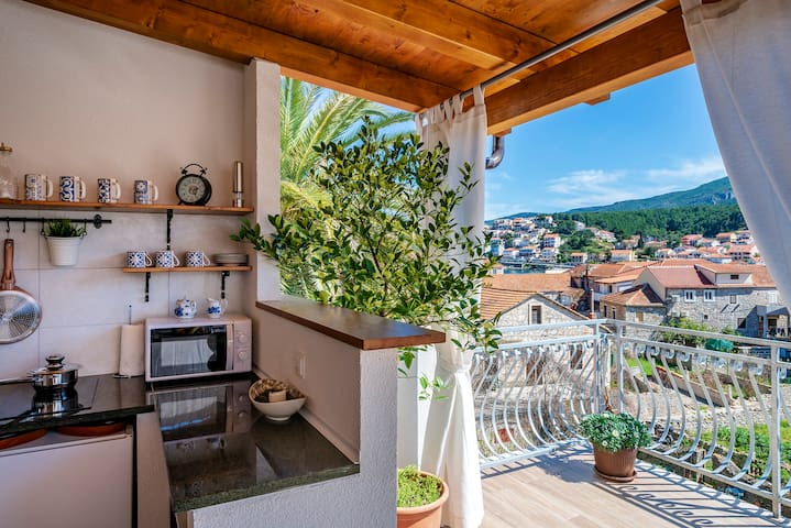 2 bedroom apt. with beautiful terrace with a view