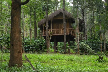 TT Mountain Mist Bamboo Cottage