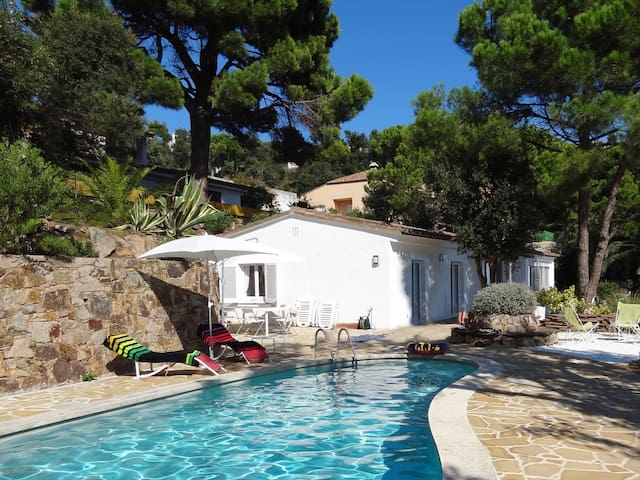Villa with pool for 6 guests ref PALMERA