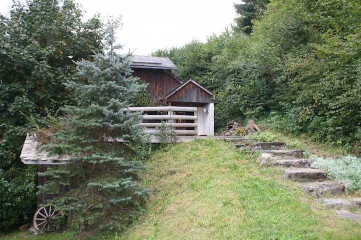 le mazot - La Rivière-Enverse - Blockhütte