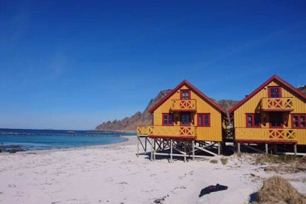 Bleik sea cabins chalet in affitto a and y nordland for Kit da baita di 5 camere da letto