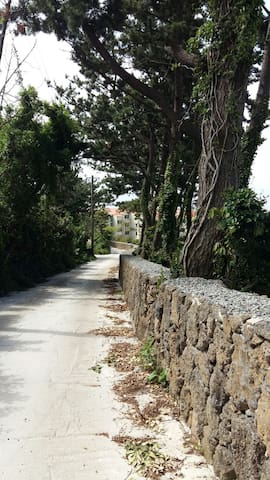 Drive down the beautiful pavement about 50 meters off the main road to reach the house.