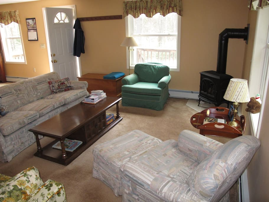 Comfortable living room with gas stove