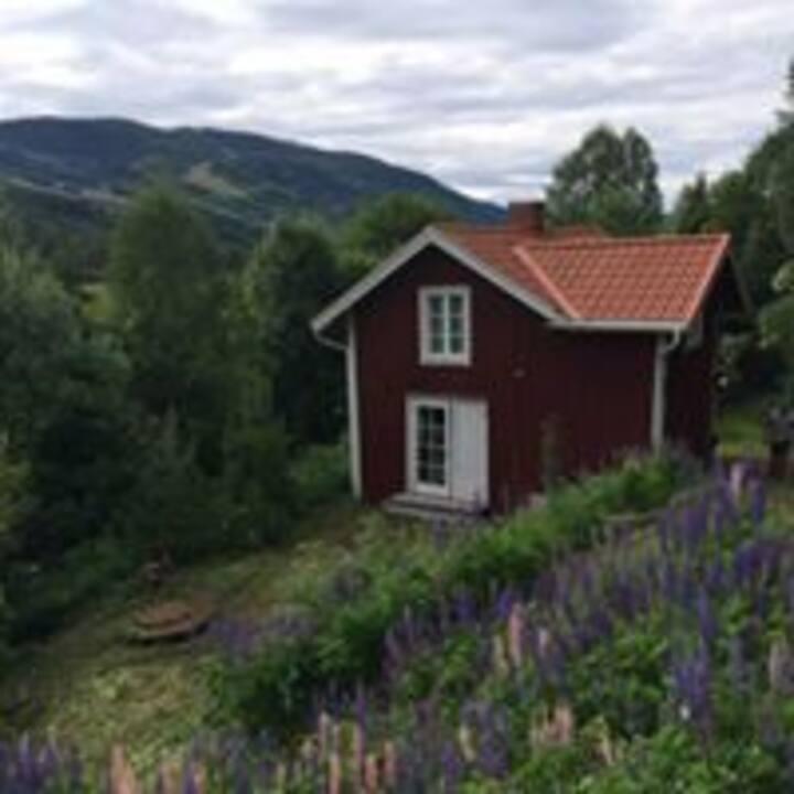 Lugnt boende i vackra Värmland