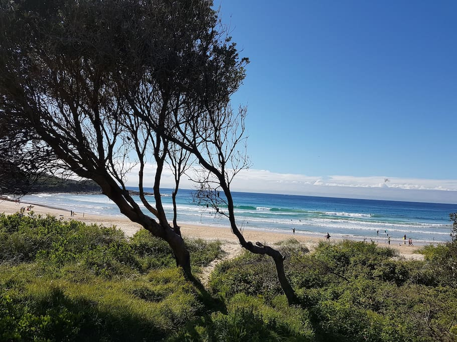 freshwater beach lookout