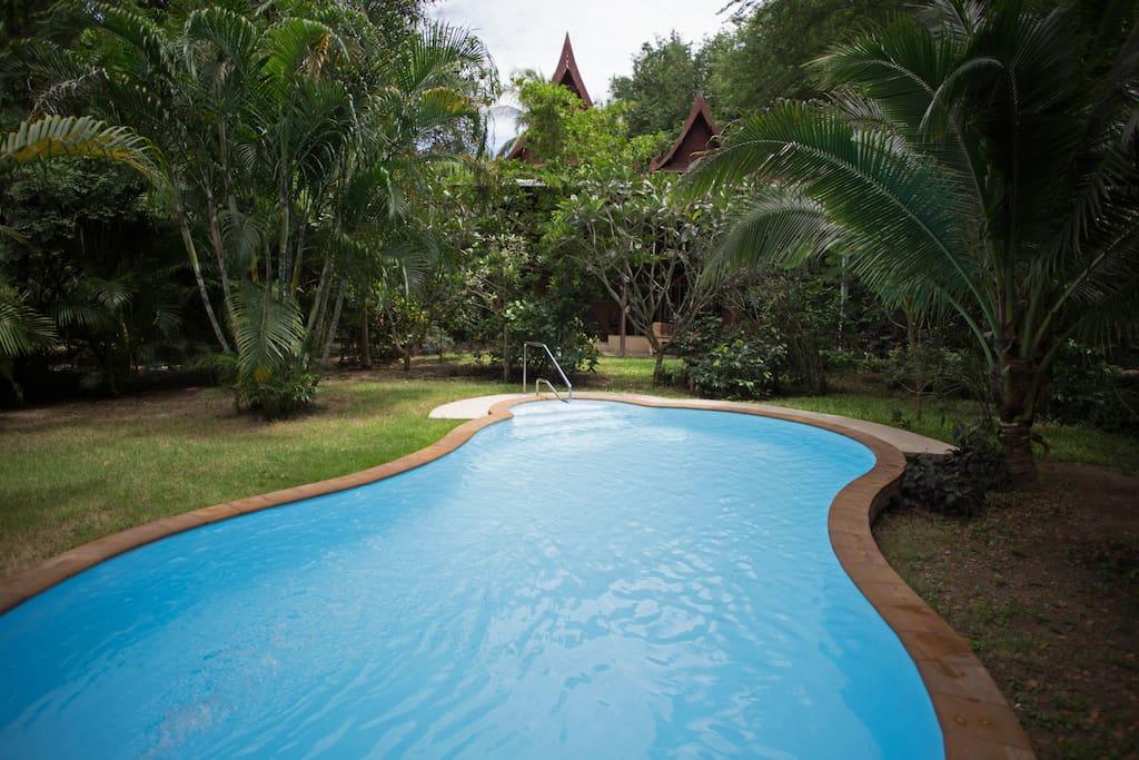 8 by 4 meter pool