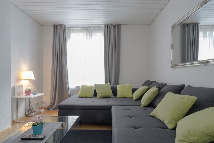 TWO ROOM (1BR) SERVICED APARTMENT IN ZURICH CITY
