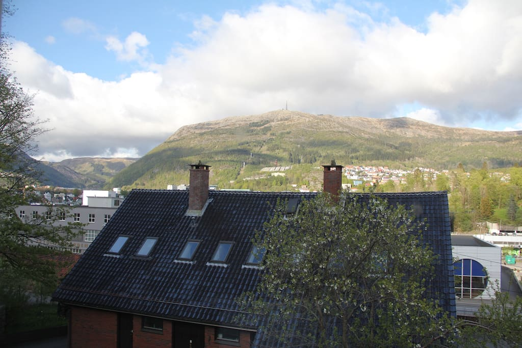 View from the livingroom. Ulrikken in the background