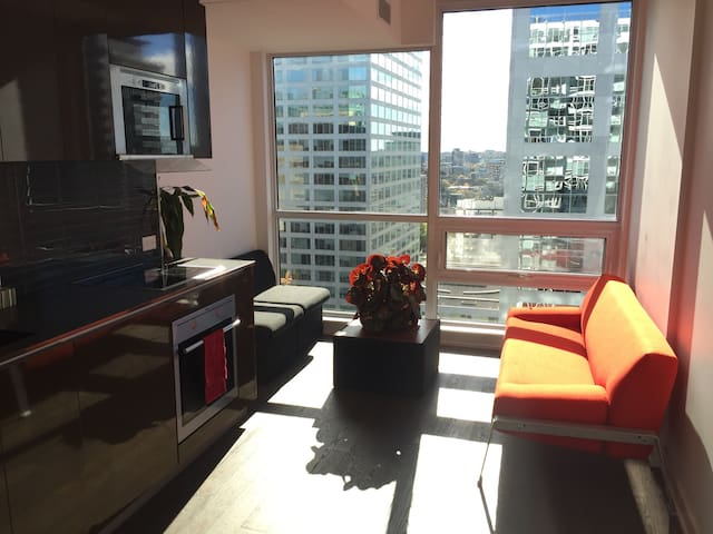 Modern Furnished Luxury studio❤️of Downtown Ottawa!