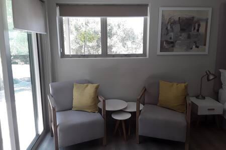 Contemporary batchelor flat