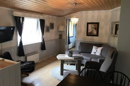 Hafslo Gjestehus apartment 4
