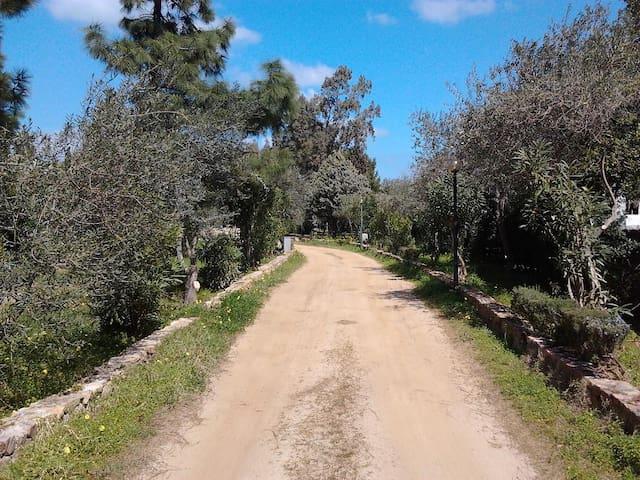 Villaggio dei Mandorli