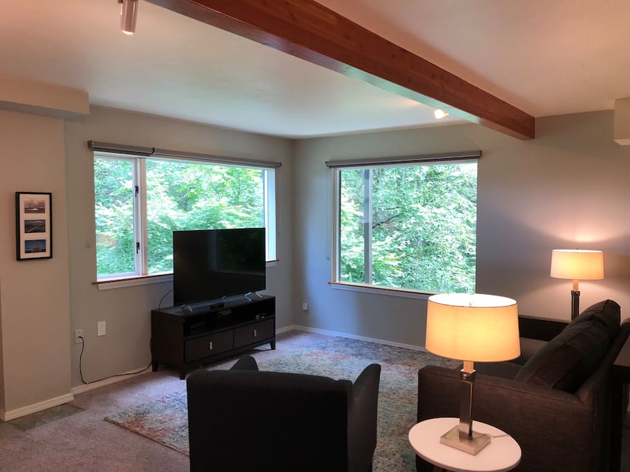 Living room with 4k TV, queen sofa bed , and two large picture windows.