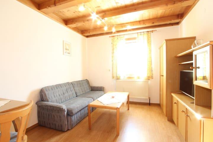 Charming Apartment in Mittersill near Ski Area