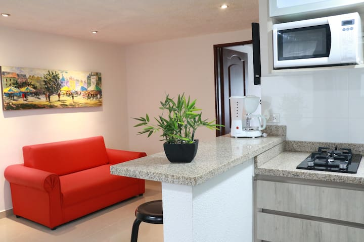 Modern apartment, strategic location (Milán Area)