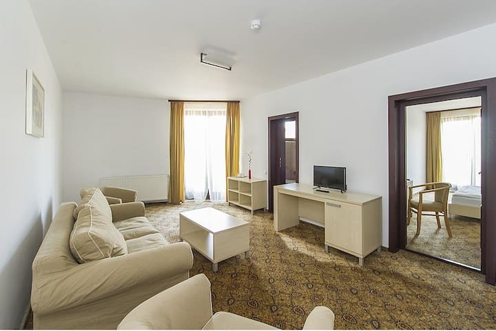 One Bedroom Apartment @ AselTur Brasov B&B