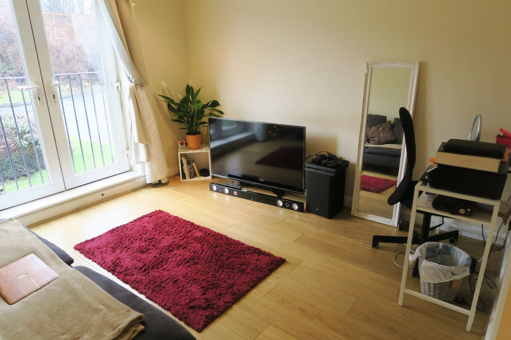 Large living space with sofa bed