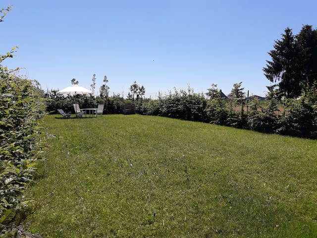 Garden for guests