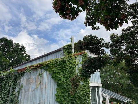 Blaues Haus - im Grünen, doch zentral
