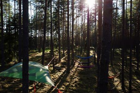 Leijuva teltta (tentsile)