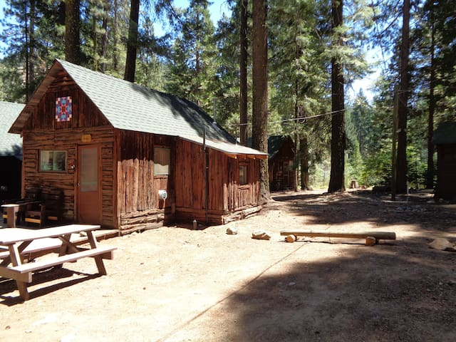 Cozy cabin in the woods by the Feather River - Plumas County