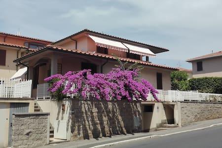 Bilocale - San Vincenzo - Appartement
