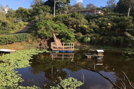 Gorgeous acreage near theme parks (private bath) 2