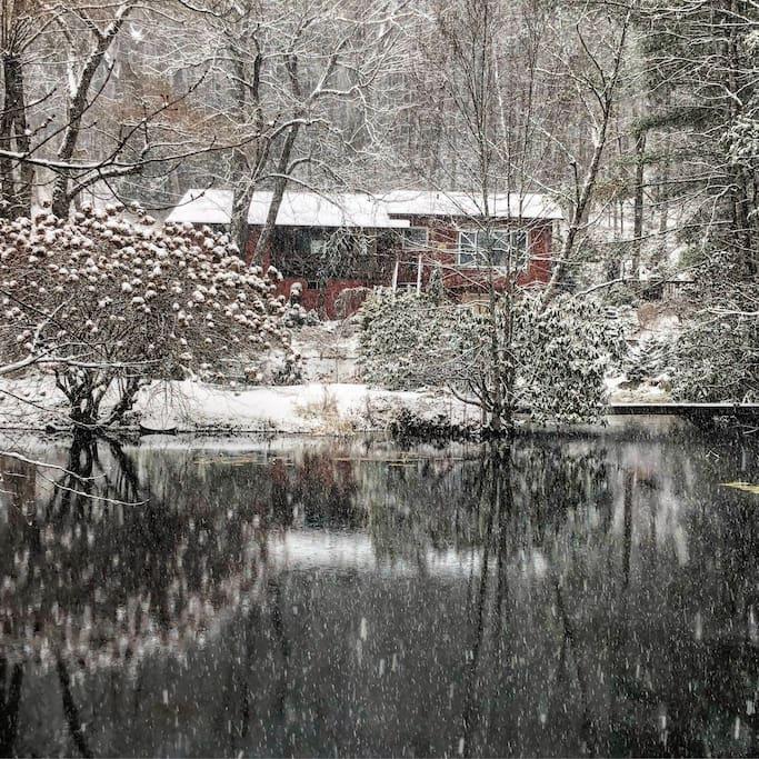 Winter at the Garden Retreat. MAGICAL.