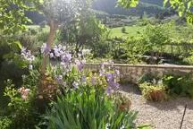 Florence Organic Natural Retreat in Organic Farm