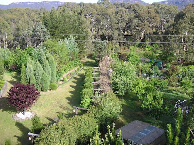 Organic Farm with Art Scape