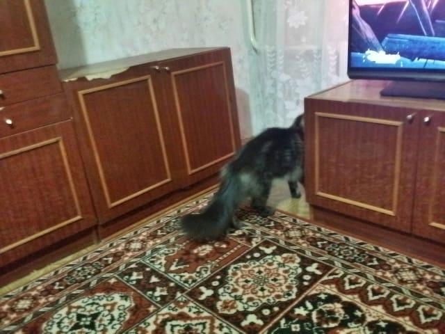 Комнаты в квартире с хозяевами - Novocheboksarsk - Leilighet