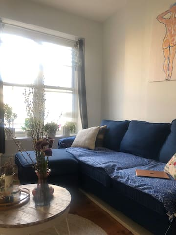 Cozy 2 Bedroom in Trendy Clinton Hill.