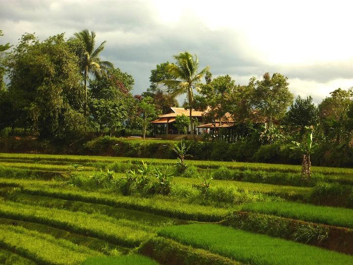 Villa,TWT, Sukabumi ada 6 kamar.